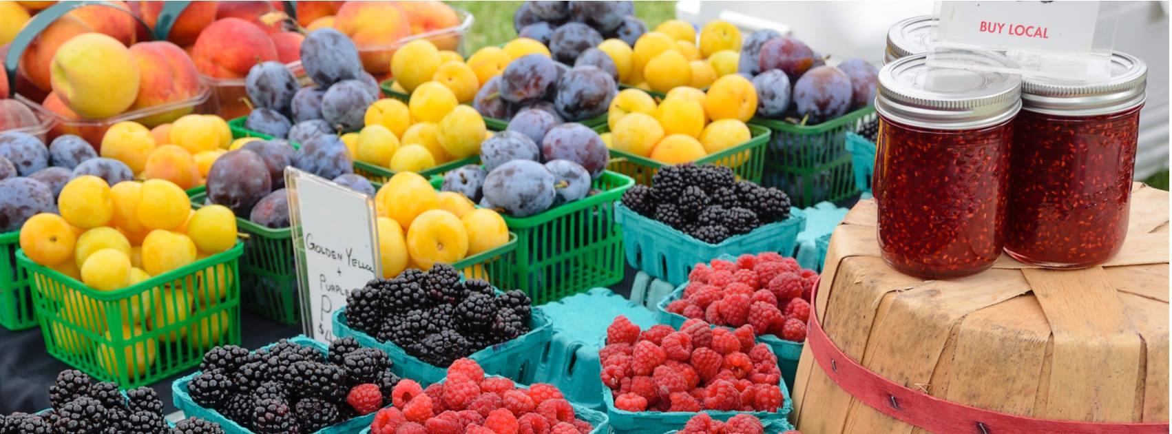 Gurnee's East Grand Farmers Market
