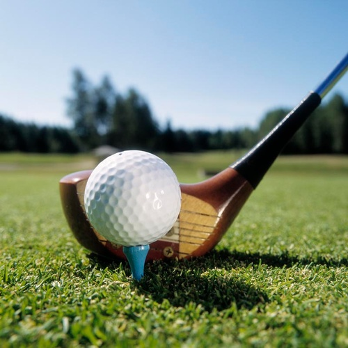 Golf Outing with Dinner and Raffles, 5/21/21