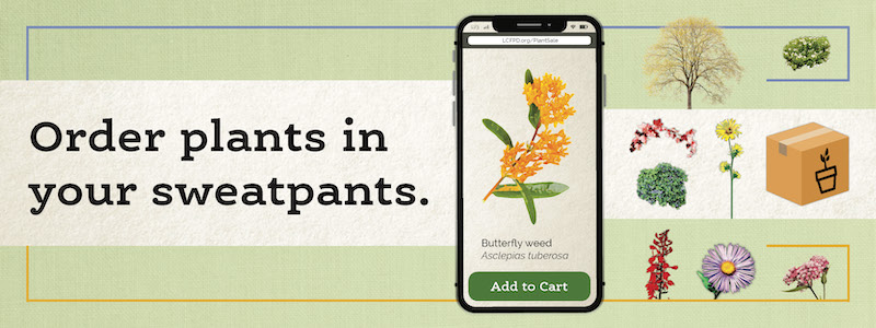 Lake County Forest Preserves 2020 Online Native Plant Sale