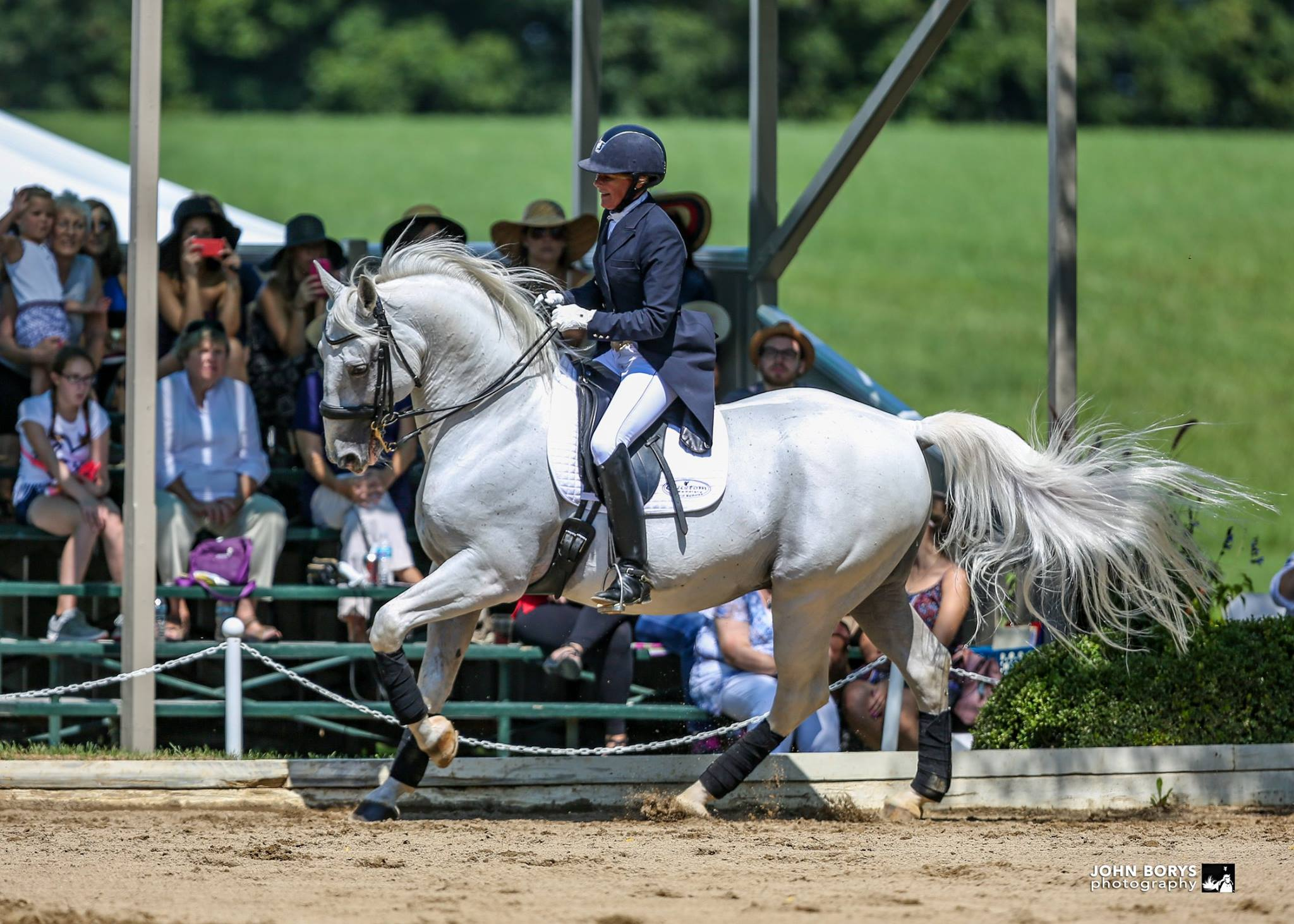 Lake County, Illinois, CVB - - Tempel Lipizzan's Performance