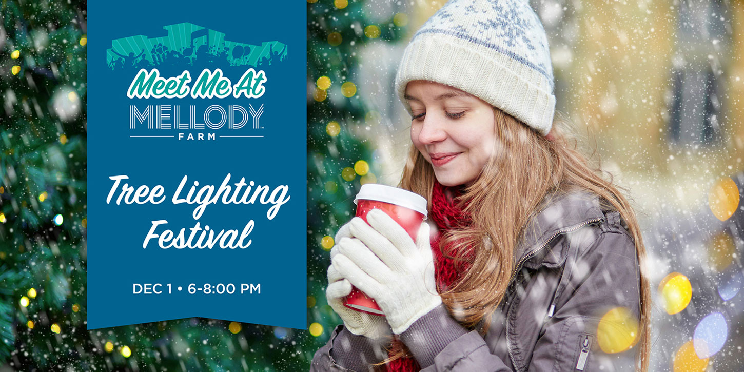 Lake County, Illinois, CVB - - Tree Lighting Festival