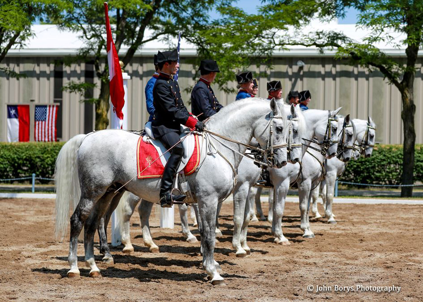 The Tempel Lipizzans Summer Spotlight Performance