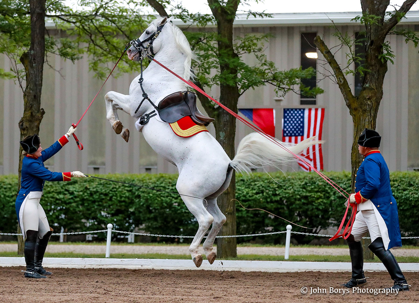 Tempel Lipizzans Evening Performance