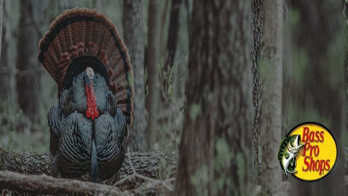 The Turkey Report Online Presentation with Bass Pro Shops Outdoor World