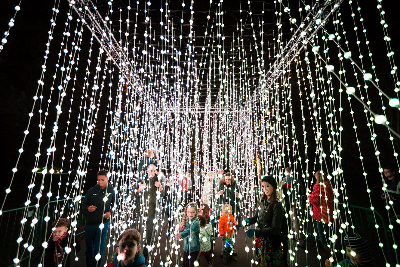 Lightscape at Chicago Botanic Garden