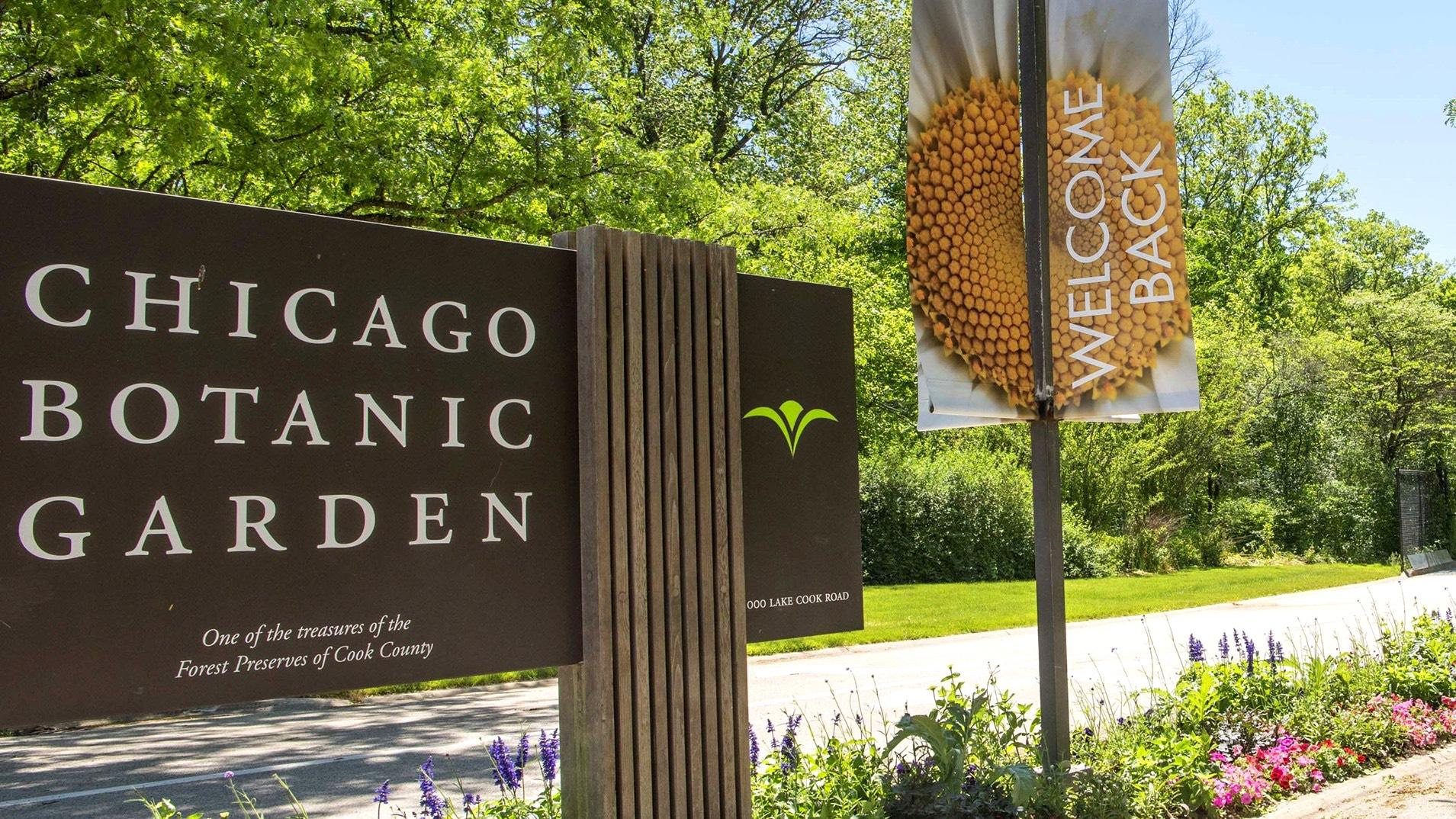 Picturing the Prairie at Chicago Botanic Gardens in Glencoe