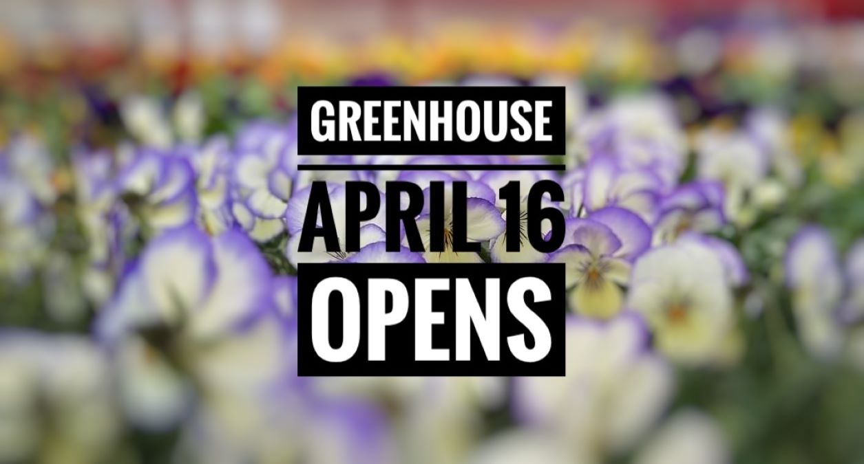 Didier Farms Greenhouse Opening Weekend!
