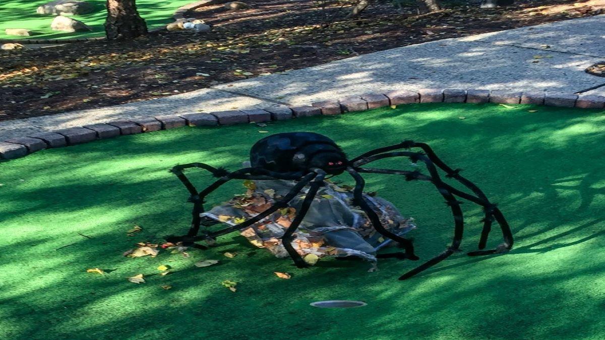 lake county illinois cvb halloween mini golf at park district of highland park halloween mini golf at park district of