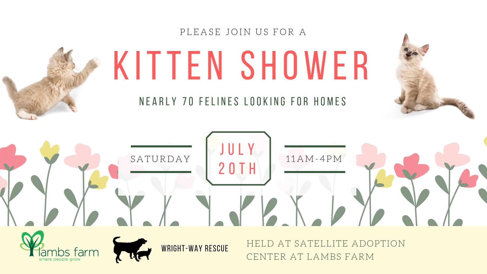 Lake County, Illinois, CVB - - Kitten Shower at Lambs Farm
