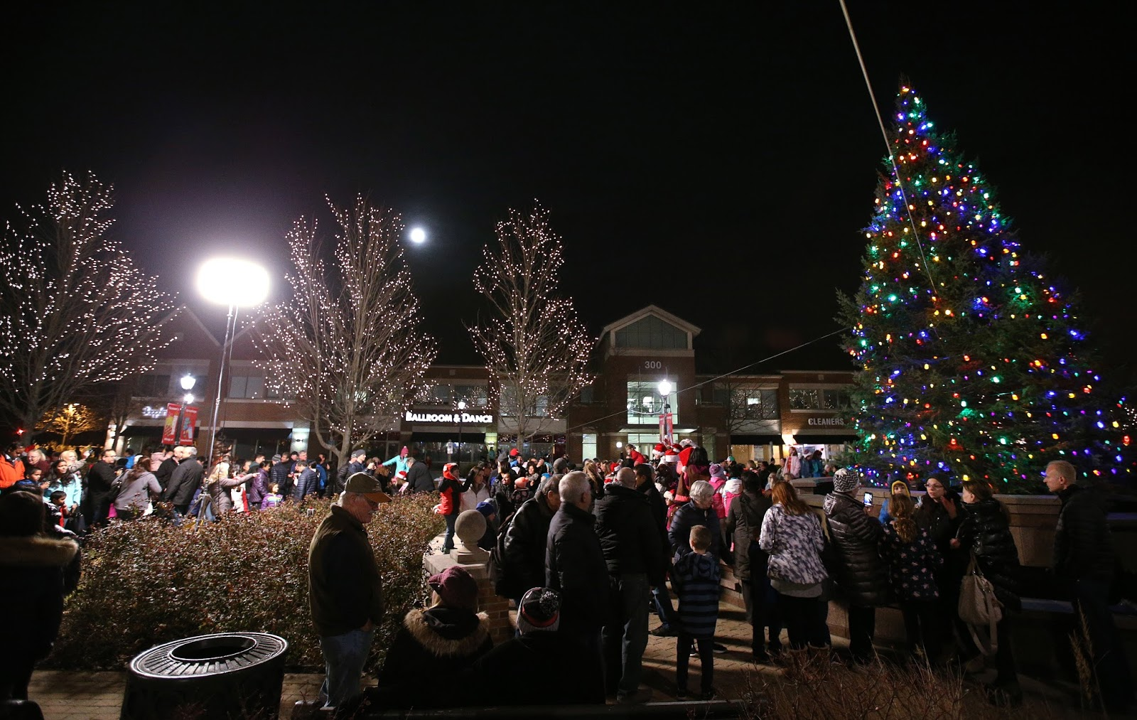 Lincolnshire's Tree Lighting Ceremony
