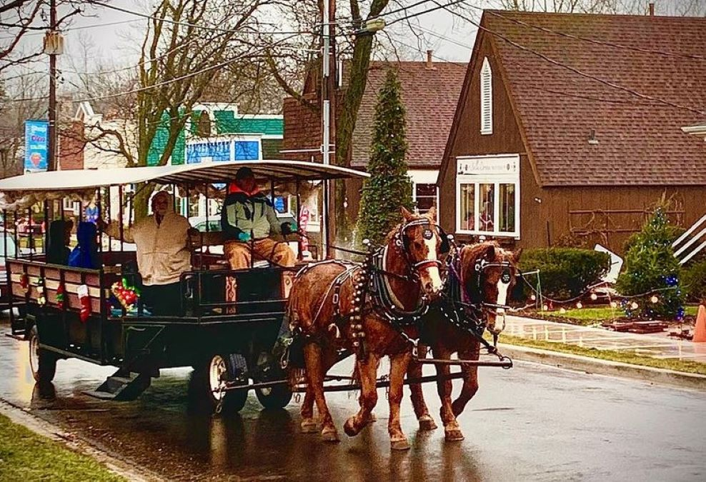 Historic Downtown Long Grove Carriage Rides