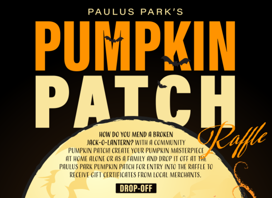 Paulus Park's Pumpkin Patch