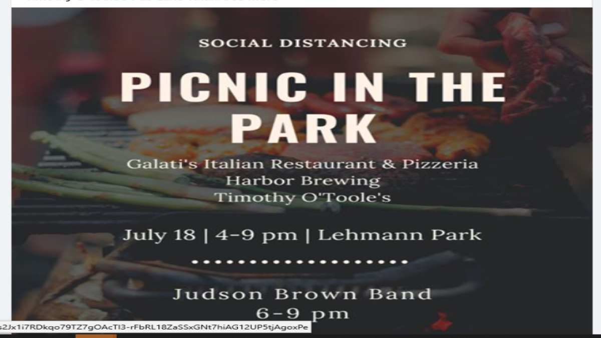 Social Distancing Picnic in the Park
