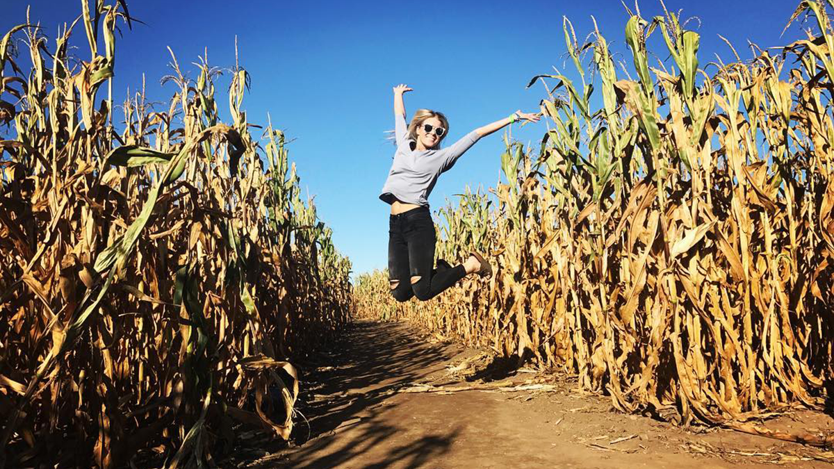 Richardson Adventure Farm & Corn Maze