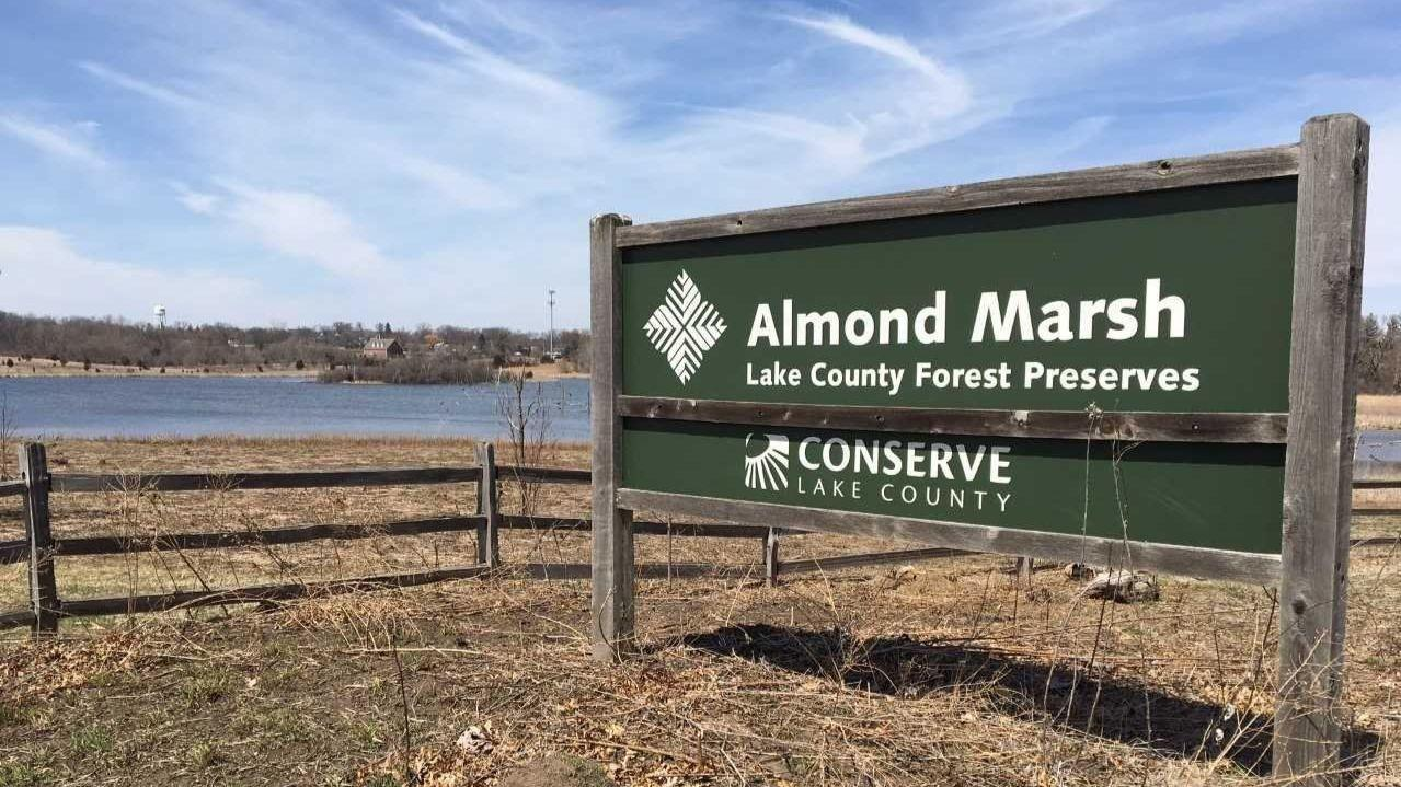 Almond Marsh Forest Preserve