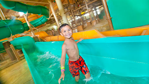 Great Wolf Lodge Illinois - Click to Enlarge