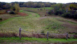 Old School Forest Preserve  - Click to Enlarge