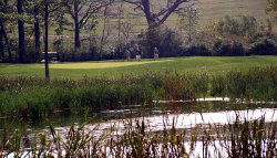 Shepherd's Crook Golf Course - Click to Enlarge